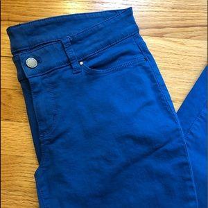 Ann Taylor Modern Fit Pants/Jeans